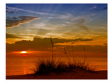 Gorgeous Sunset Giclée-trykk av Melanie Viola