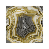 Agate in Gold & Grey Giclee Print by Danielle Carson