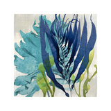 Sea Nature II Giclee Print by Melonie Miller