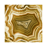 Agate in Amber Giclee Print by Danielle Carson