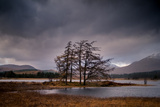Loch Tulla Metal Print by Doug Chinnery