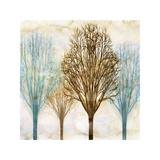 Among the Trees II Giclee Print by Chris Donovan