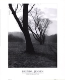 The Dance Prints by Brenda Jensen