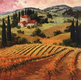 Dawn of a Tuscan Vineyard Poster by Eva Szorc