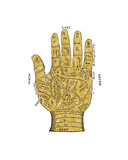 Vintage Palmistry Giclee Print by Oliver Jeffries
