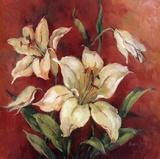 Crimson Lilies I Arte di Barbara Mock