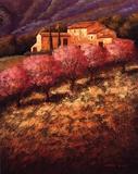 Cherry Blossoms Print by Santo Devita