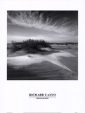 Sand & Snow Prints by Richard Calvo