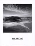 Sand & Snow Prints by Richard Calvo