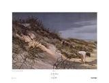 At The Beach Posters by Carolyn Blish