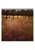 Orchard Prints by Ken Hildrew