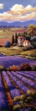 Fields Of Lavender I Print by Sung Kim