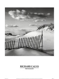 Sand & Snow Posters by Richard Calvo