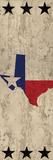 Lone Star State Poster by Kimberly Allen