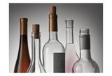 Bottle Neck 1 Prints by Barry Seidman