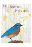 Bluebird Day Posters by Kimberly Allen