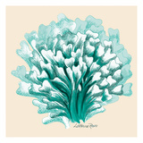 Teal Coral 3 Posters by Lorraine Rossi