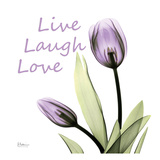 Purple Tulips Live Laugh Love Print by Albert Koetsier