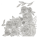 Blooming Roses Prints by Pam Varacek