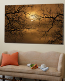 Branches Surrounding Harvest Moon Poster by Robert Llewellyn
