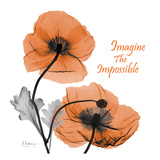 Iceland Poppy Quote Prints by Albert Koetsier