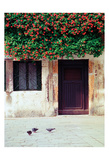 Venice Floral Overhang Poster by Jeff Pica