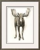 Majestic Wildlife I Framed Giclee Print by Grace Popp