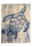 Blue Sea Turtle Posters by Pam Varacek