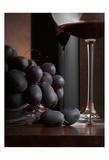 Black Grapes Prints by Barry Seidman