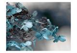 Blue Hydrangea Posters by Tracey Telik
