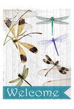 Welcome Dragonflies Art by Kimberly Allen