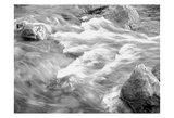 In Motion BW 2B Prints by Lisa Colberg