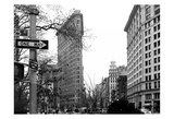 Flat Iron BW Prints by Tracey Telik