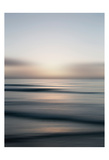Tropical Sorbet Prints by Tracey Telik