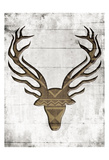 White Wood Dear Prints by Jace Grey