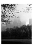 Central Park A Prints by Jeff Pica