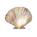 Sea Shell Neutral 2 Poster par Beverly Dyer