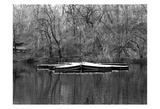 Central Park Rowboats Together Print by Jeff Pica