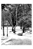 Central Park Snowy Scene Prints by Jeff Pica