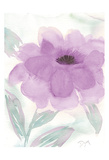 Lilac Peony II Posters par Beverly Dyer
