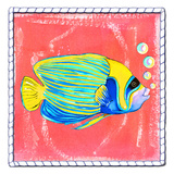 Beach Front Fish Prints by Anne Ormsby