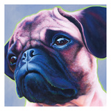 Blue Bulldog 82486 Prints by May May
