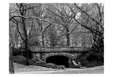 Central Park Bridge 2 Art by Jeff Pica