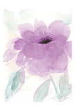 Lilac Peony I Posters by Beverly Dyer