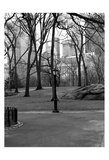 Central Park Image 062 Posters by Jeff Pica