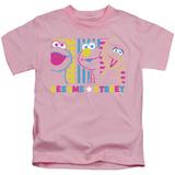 Juvenile: Sesame Street- Patterns & Shapes Friends T-shirts
