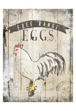 Free Range Eggs Poster by  OnRei