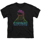 Youth: Sesame Street- Subdued Cookie Monster Shirt
