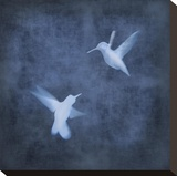 Flight in Blue I Stretched Canvas Print by Chris Donovan