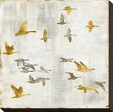 Golden Flight I Reproduction sur toile tendue par Nick Spencer